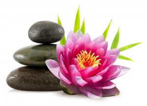 Logo perle de beauté. Galets et lotus