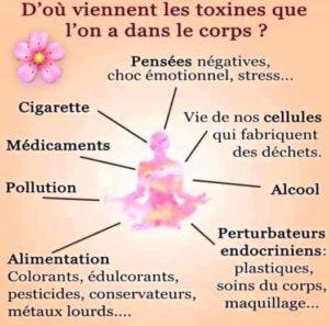 d'ou viennent les toxines?